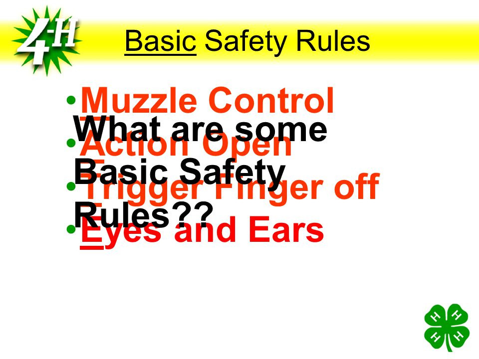 What are some Basic Safety Rules