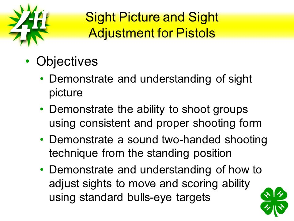 Sight Picture and Sight Adjustment for Pistols