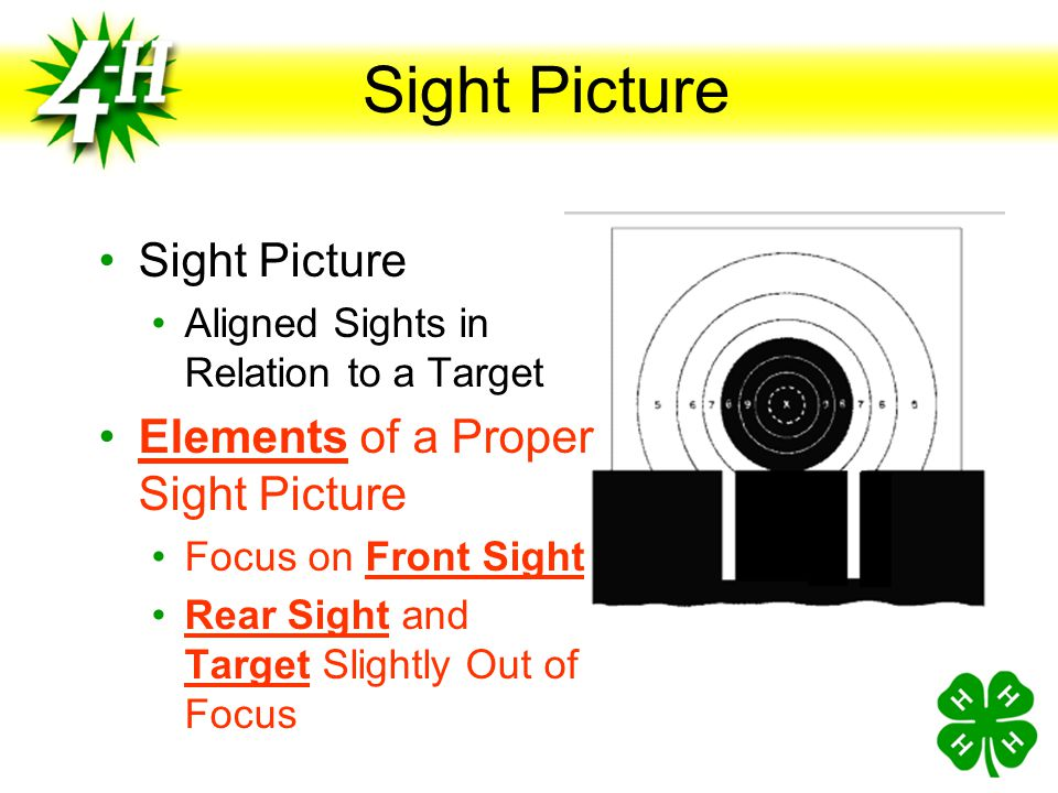 Sight Picture Sight Picture Elements of a Proper Sight Picture
