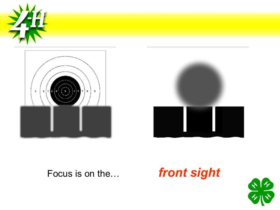 Focus is on the… front sight