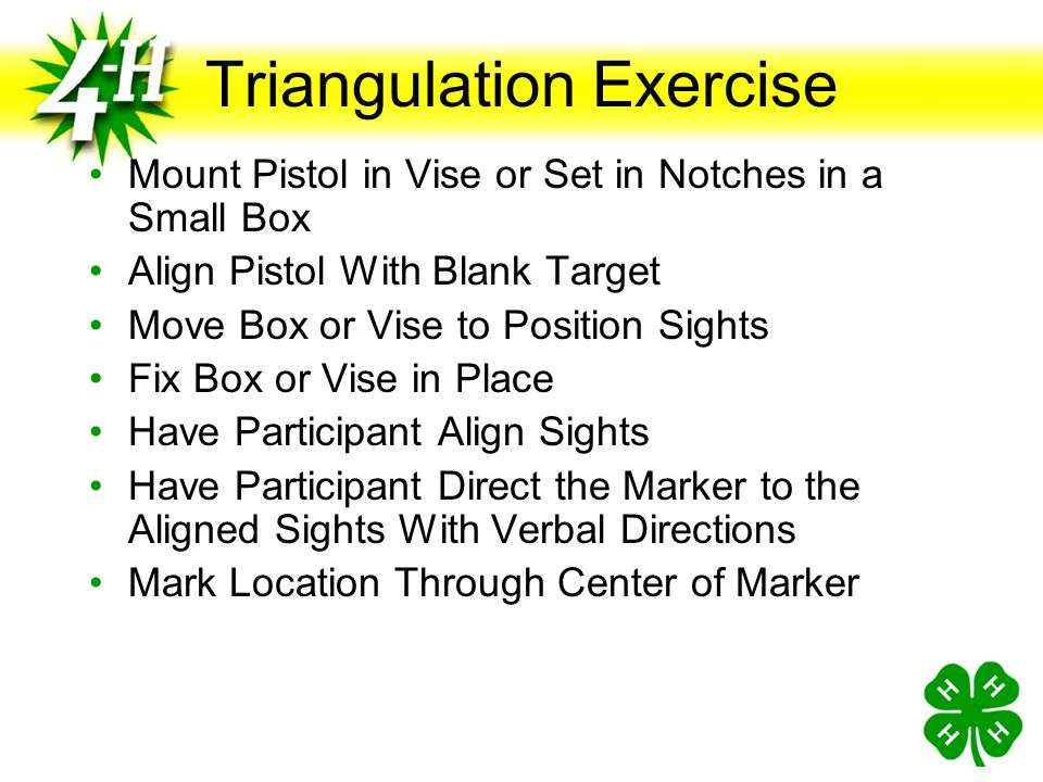 Triangulation Exercise