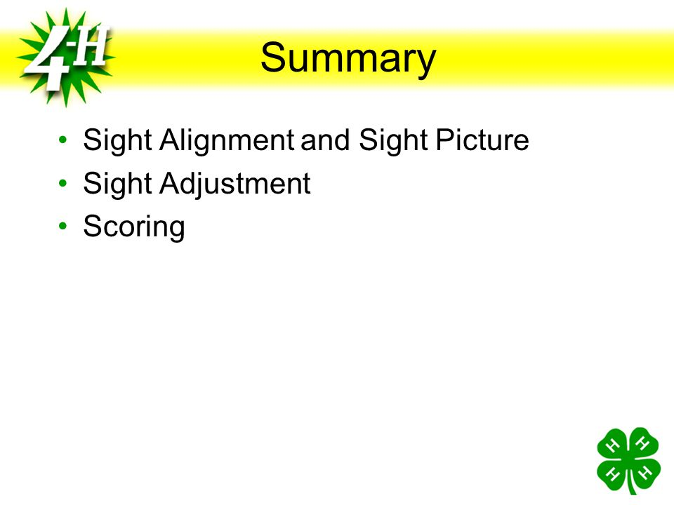 Summary Sight Alignment and Sight Picture Sight Adjustment Scoring