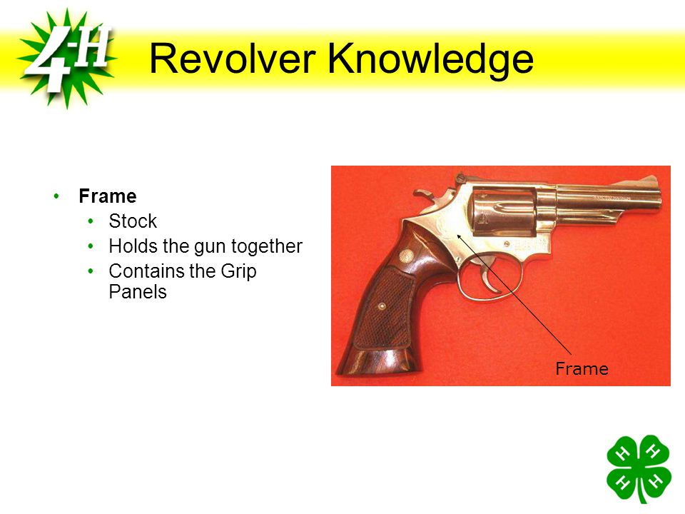 Revolver Knowledge Frame Stock Holds the gun together
