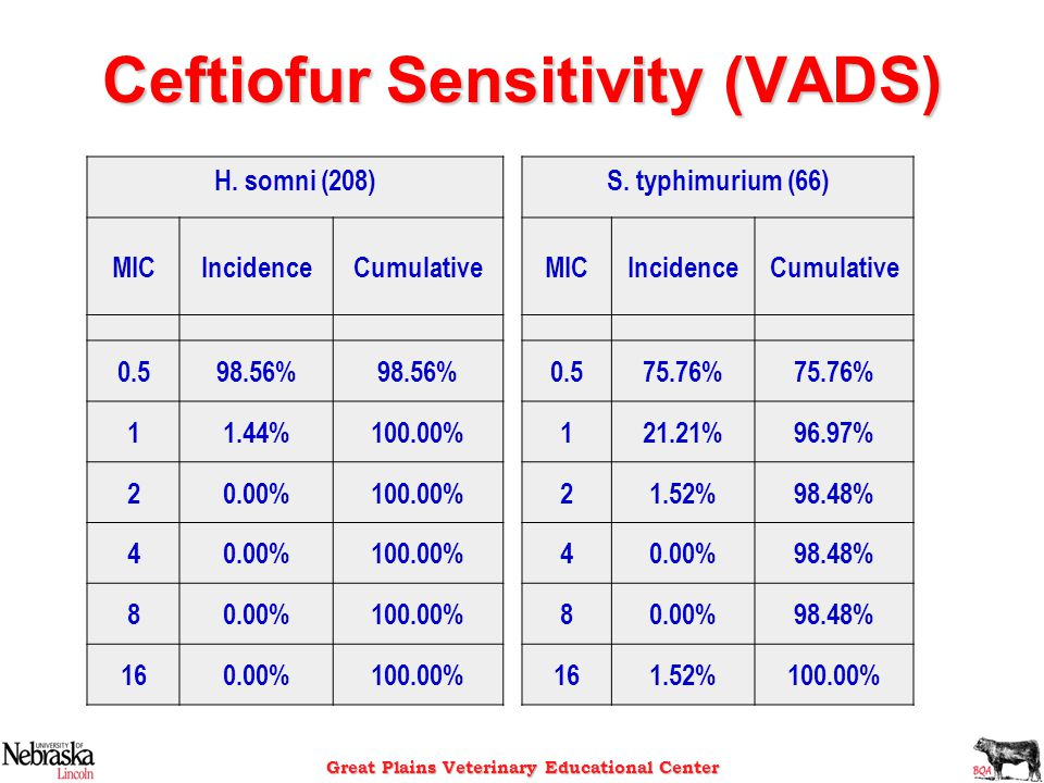 Ceftiofur Sensitivity (VADS)