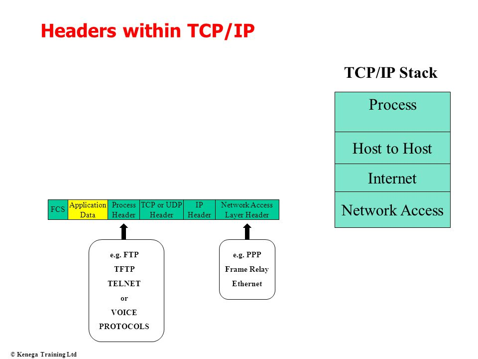 Headers within TCP/IP TCP/IP Stack Process Host to Host Internet