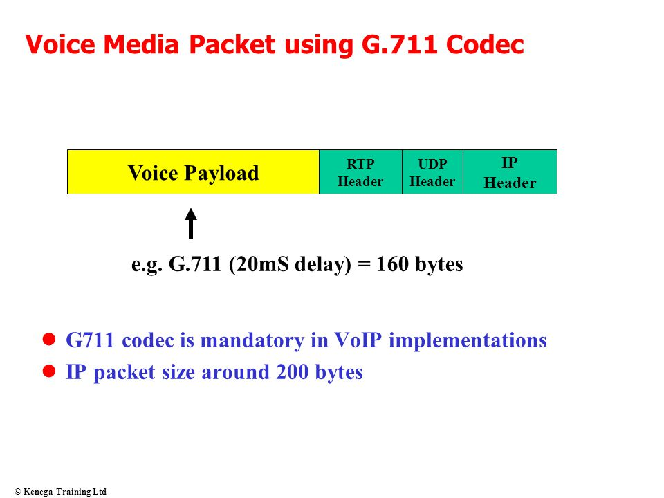 Voice Media Packet using G.711 Codec