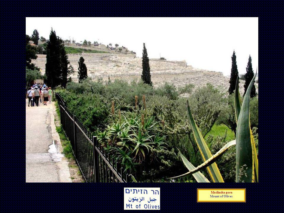 Maslinska gora Mount of Olives