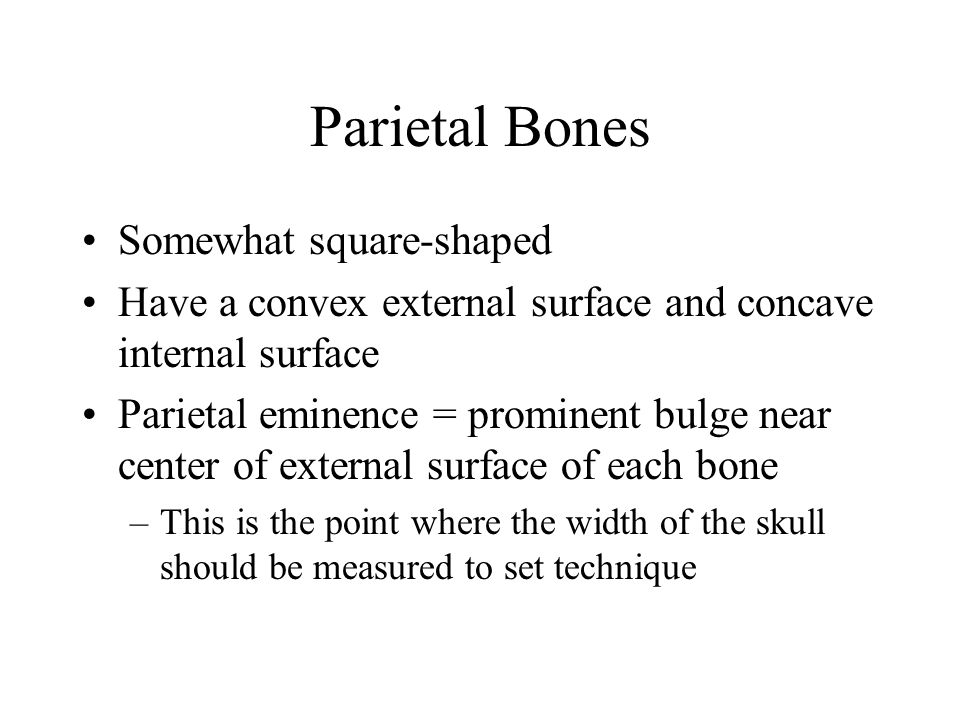 Parietal Bones Somewhat square-shaped
