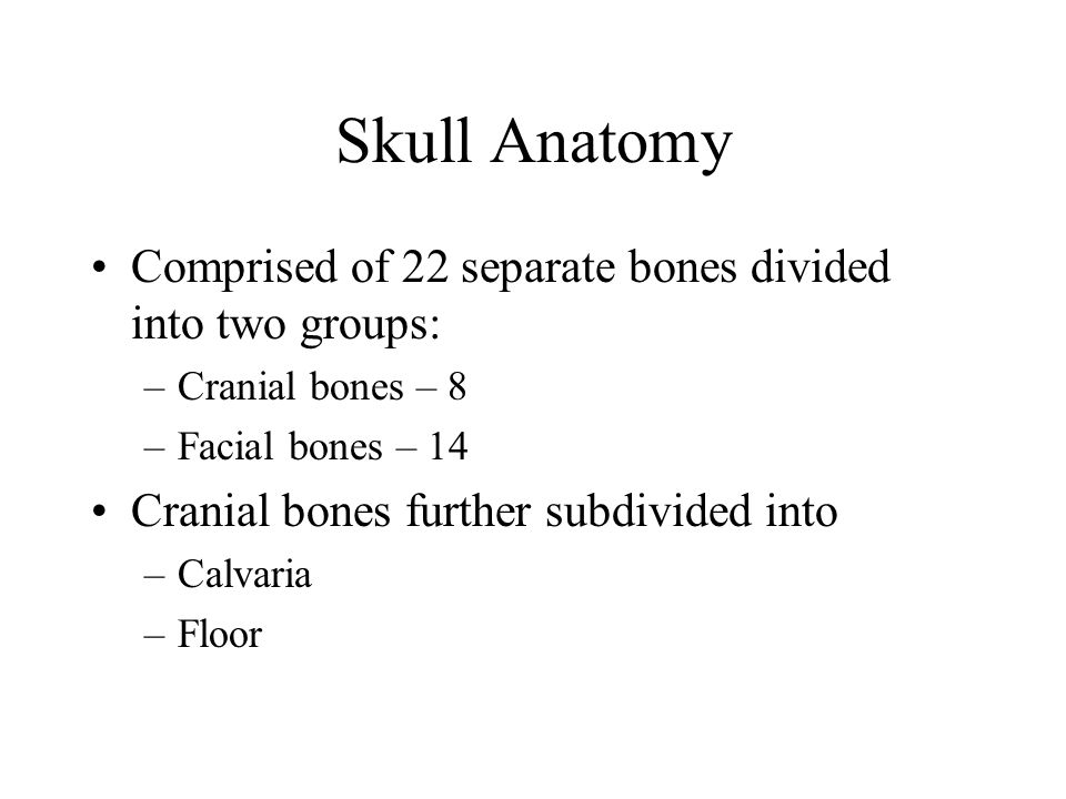 Skull Anatomy Comprised of 22 separate bones divided into two groups: