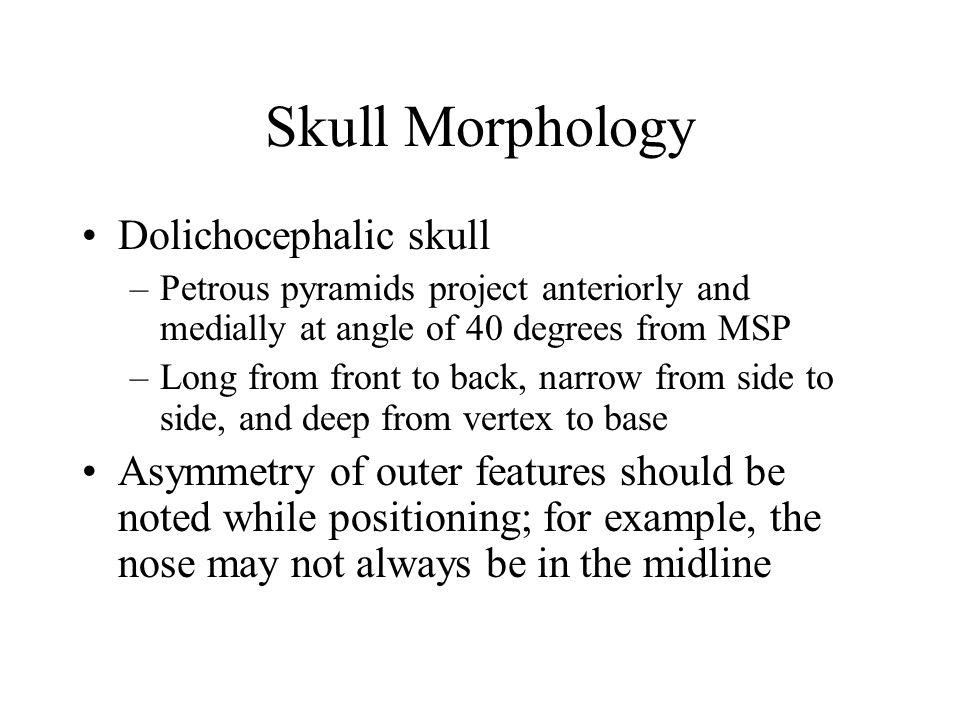 Skull Morphology Dolichocephalic skull