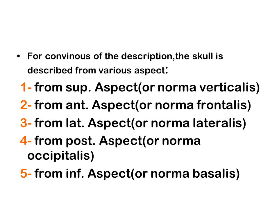 1- from sup. Aspect(or norma verticalis)