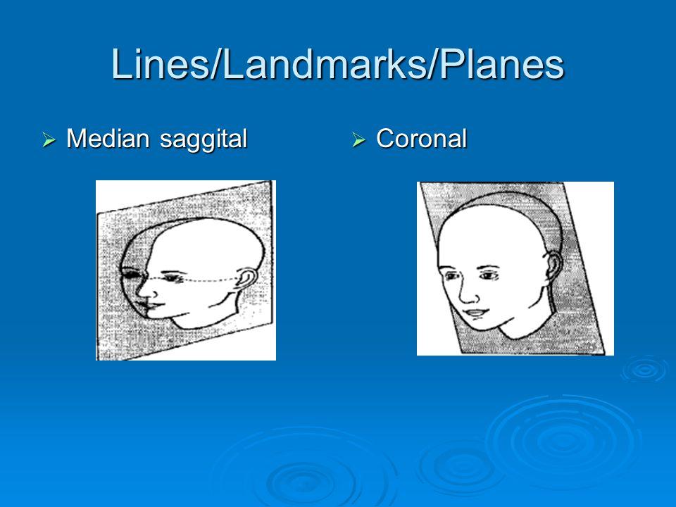 Lines/Landmarks/Planes