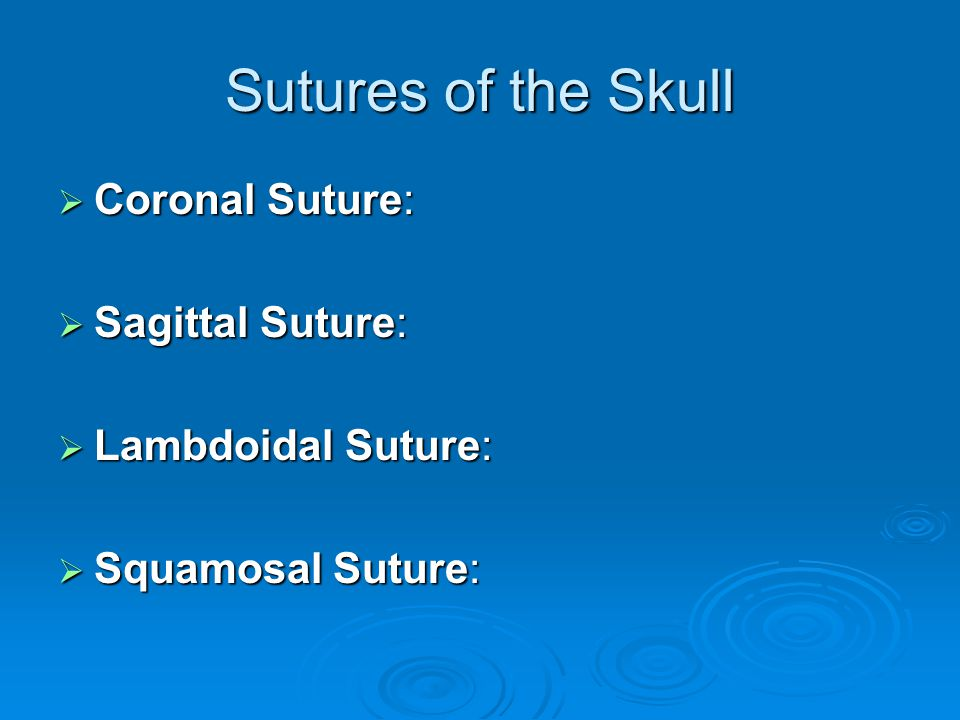 Sutures of the Skull Coronal Suture: Sagittal Suture: