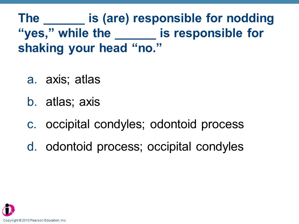 occipital condyles; odontoid process