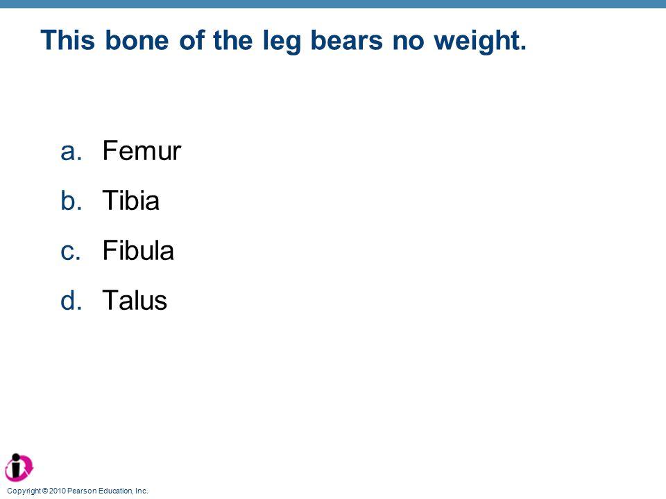 This bone of the leg bears no weight.