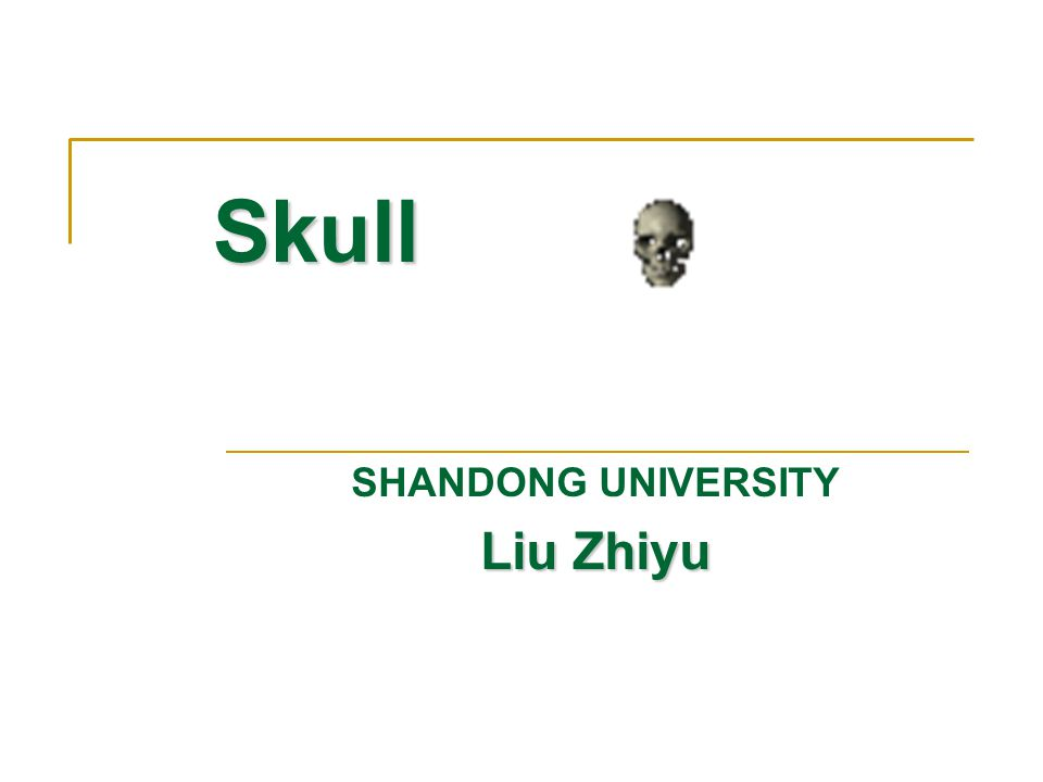 SHANDONG UNIVERSITY Liu Zhiyu