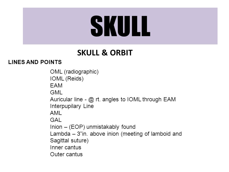 SKULL SKULL & ORBIT LINES AND POINTS OML (radiographic) IOML (Reids)