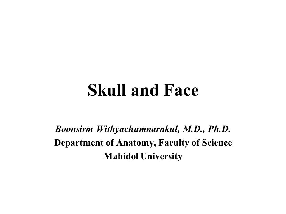 Skull and Face Boonsirm Withyachumnarnkul, M.D., Ph.D.