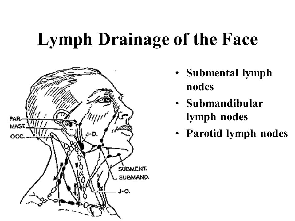 Lymph Drainage of the Face