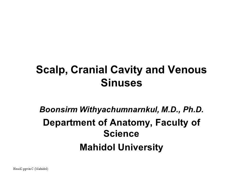 Scalp, Cranial Cavity and Venous Sinuses