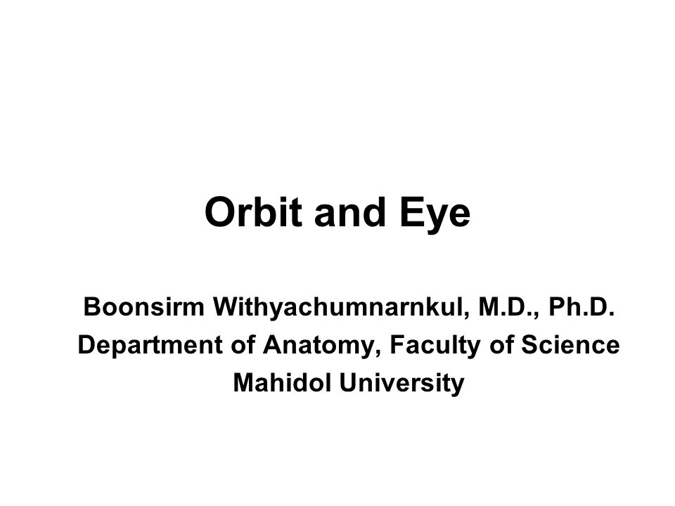 Orbit and Eye Boonsirm Withyachumnarnkul, M.D., Ph.D.