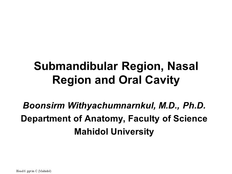 Submandibular Region, Nasal Region and Oral Cavity