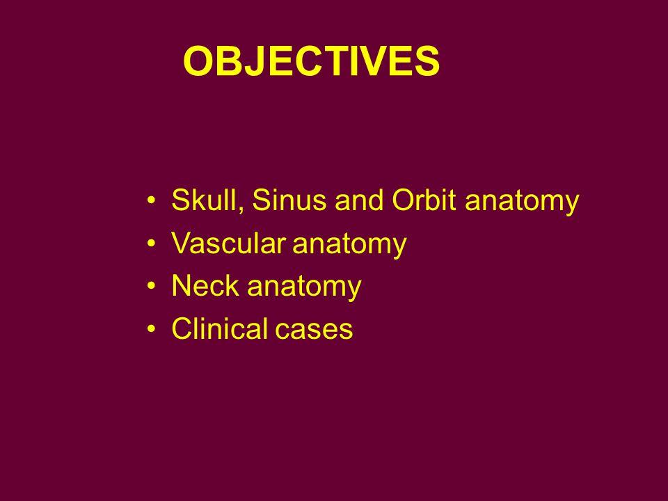OBJECTIVES Skull, Sinus and Orbit anatomy Vascular anatomy
