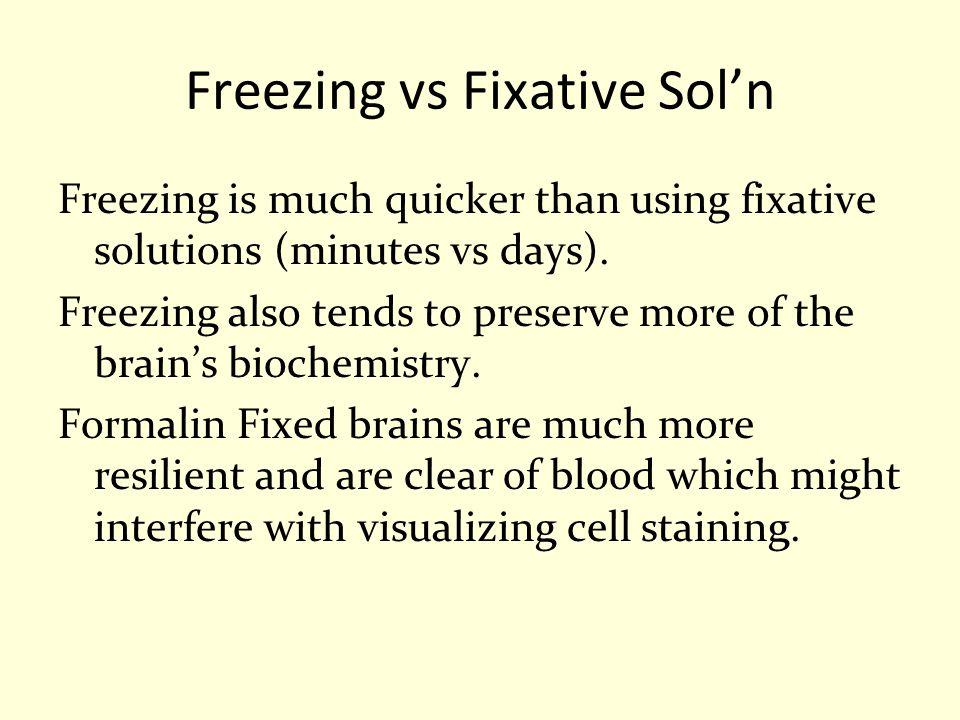 Freezing vs Fixative Sol'n