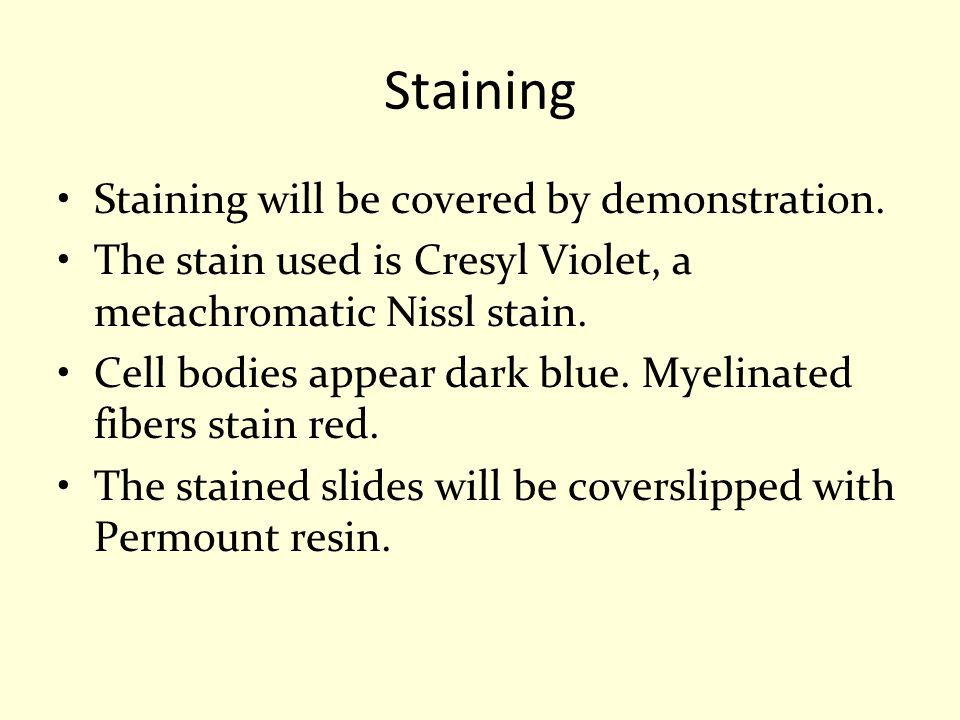 Staining Staining will be covered by demonstration.