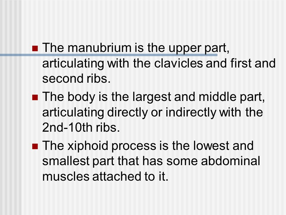 The manubrium is the upper part, articulating with the clavicles and first and second ribs.