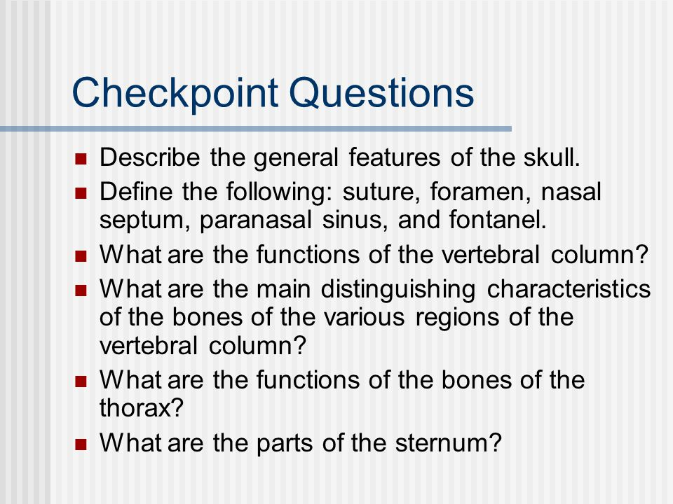 Checkpoint Questions Describe the general features of the skull.
