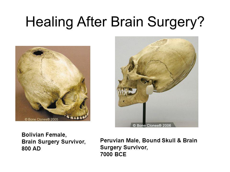 Healing After Brain Surgery