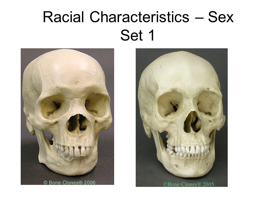 Racial Characteristics – Sex Set 1