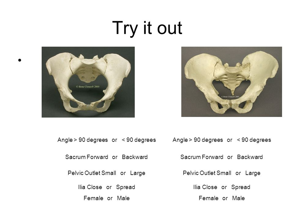Try it out Angle > 90 degrees or < 90 degrees