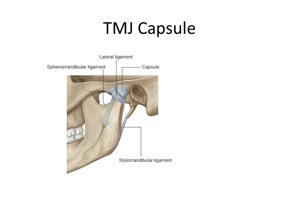 TMJ Capsule