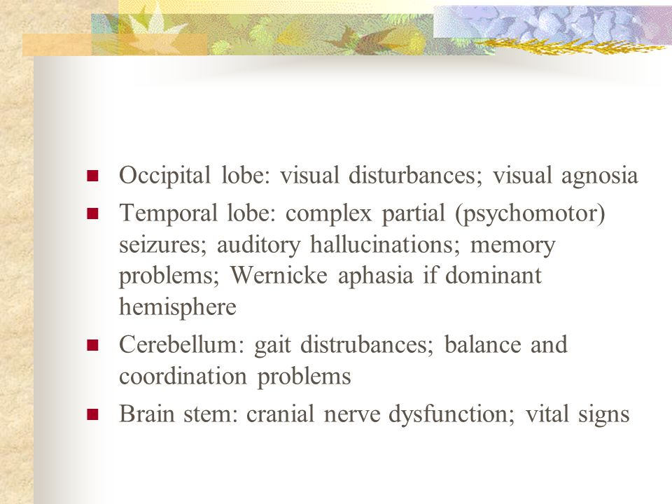 Occipital lobe: visual disturbances; visual agnosia
