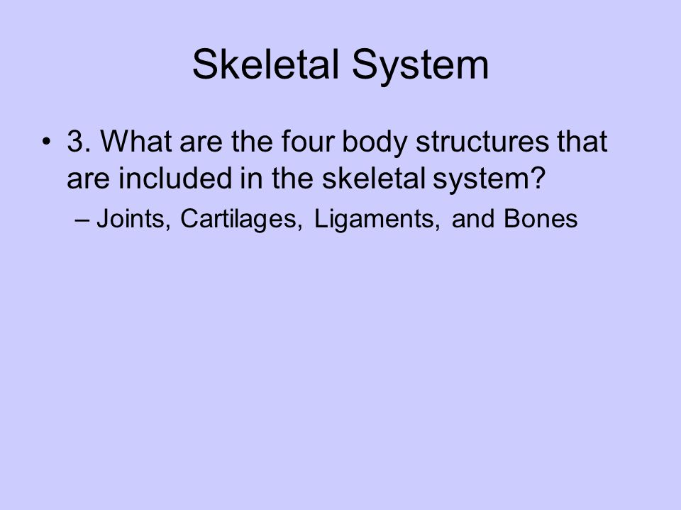 Skeletal System 3. What are the four body structures that are included in the skeletal system.