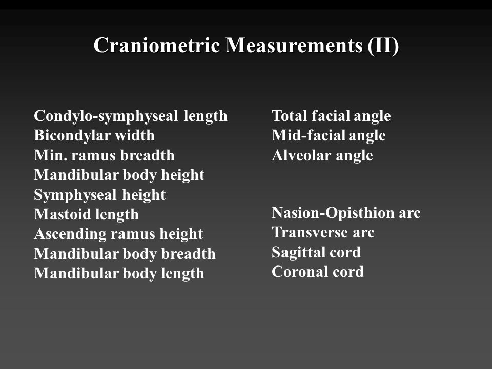 Craniometric Measurements (II)