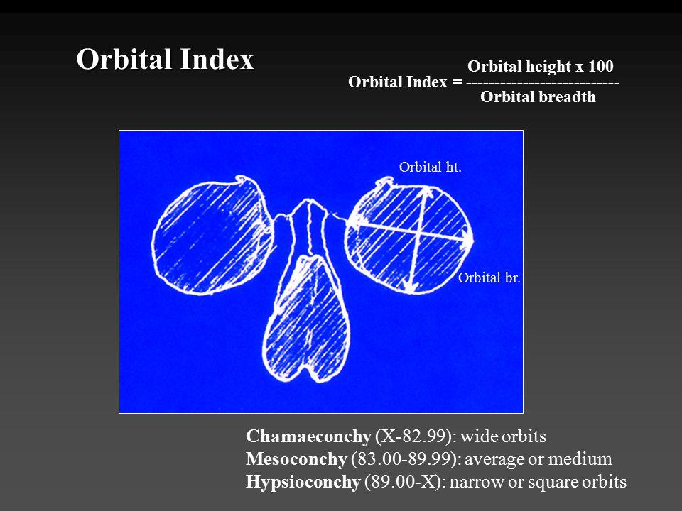 Orbital Index Chamaeconchy (X-82.99): wide orbits