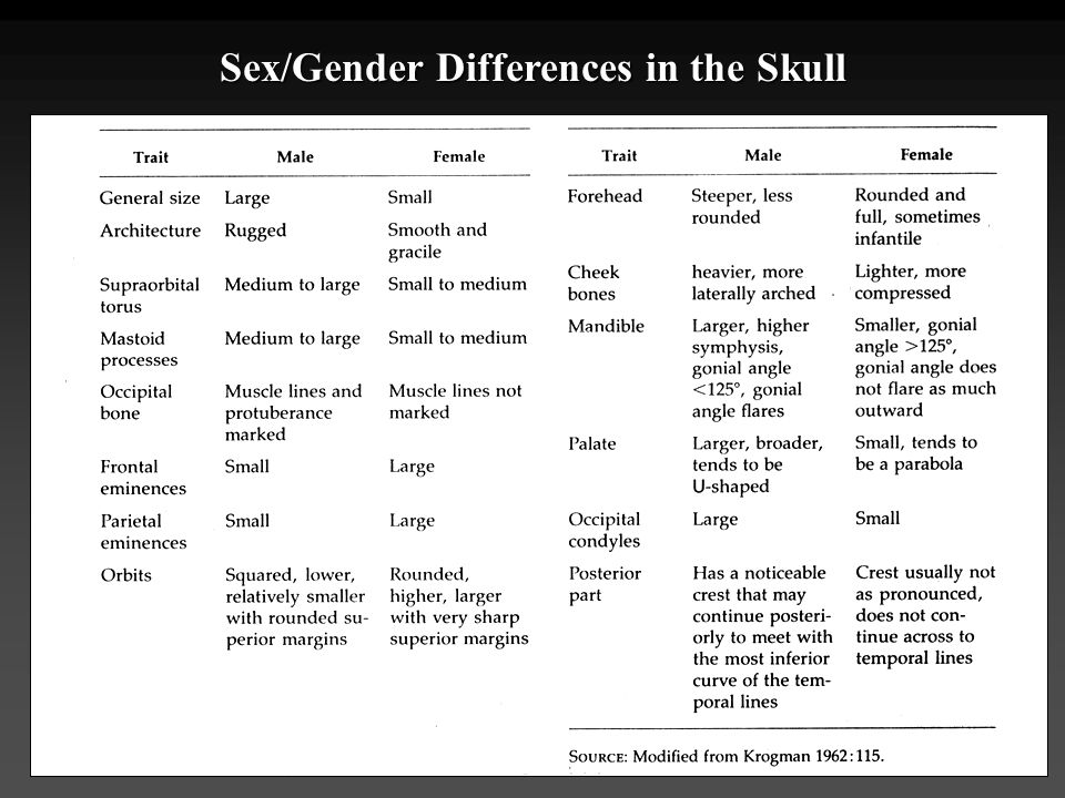 Sex/Gender Differences in the Skull