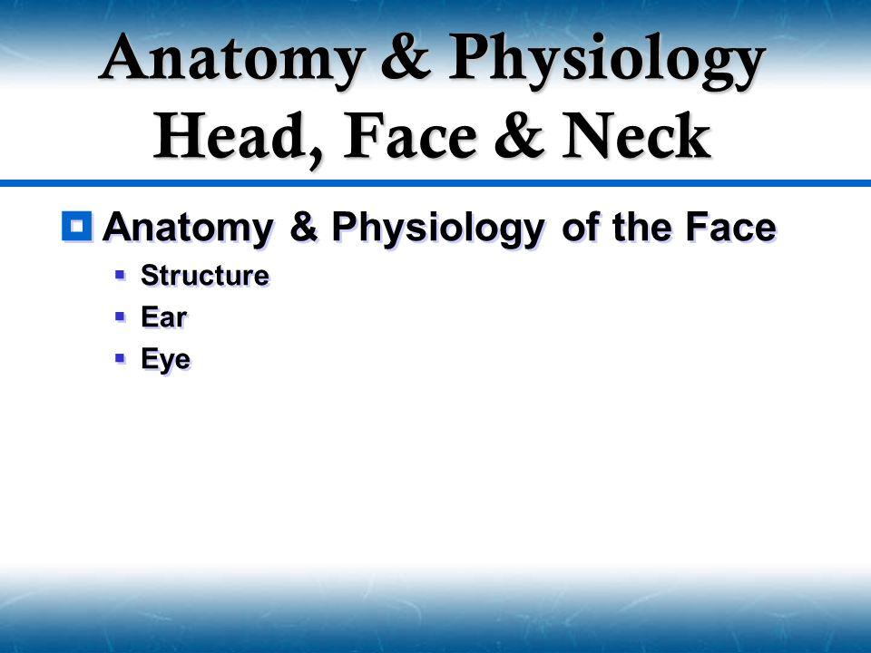 Anatomy & Physiology Head, Face & Neck