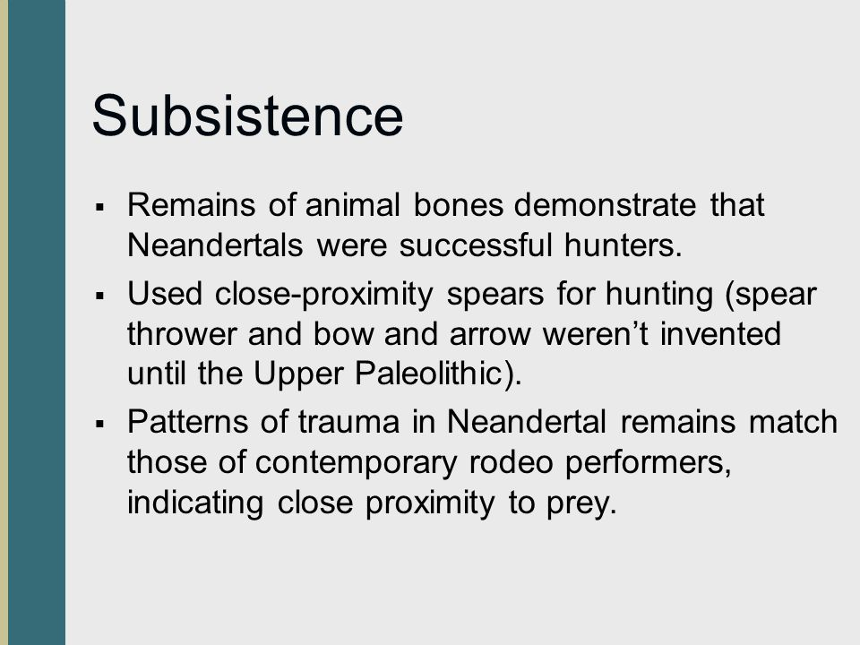 Subsistence Remains of animal bones demonstrate that Neandertals were successful hunters.