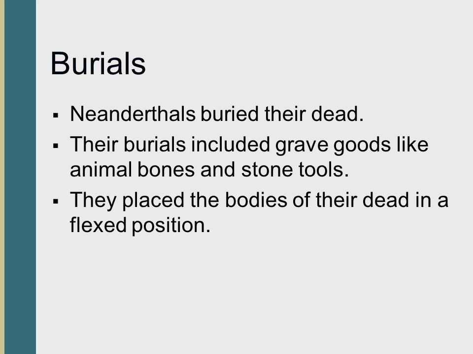 Burials Neanderthals buried their dead.