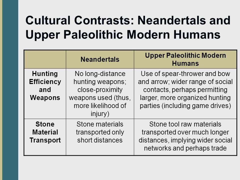 Cultural Contrasts: Neandertals and Upper Paleolithic Modern Humans