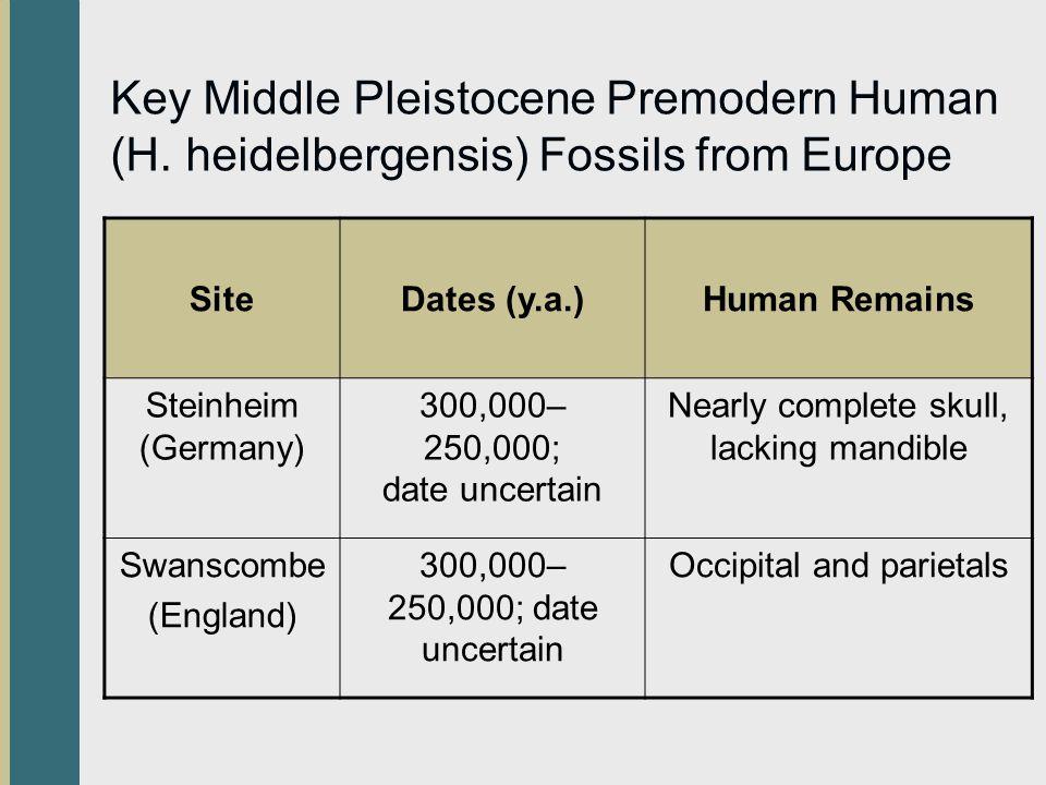 Key Middle Pleistocene Premodern Human (H