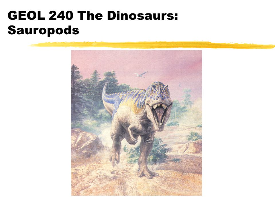 GEOL 240 The Dinosaurs: Sauropods