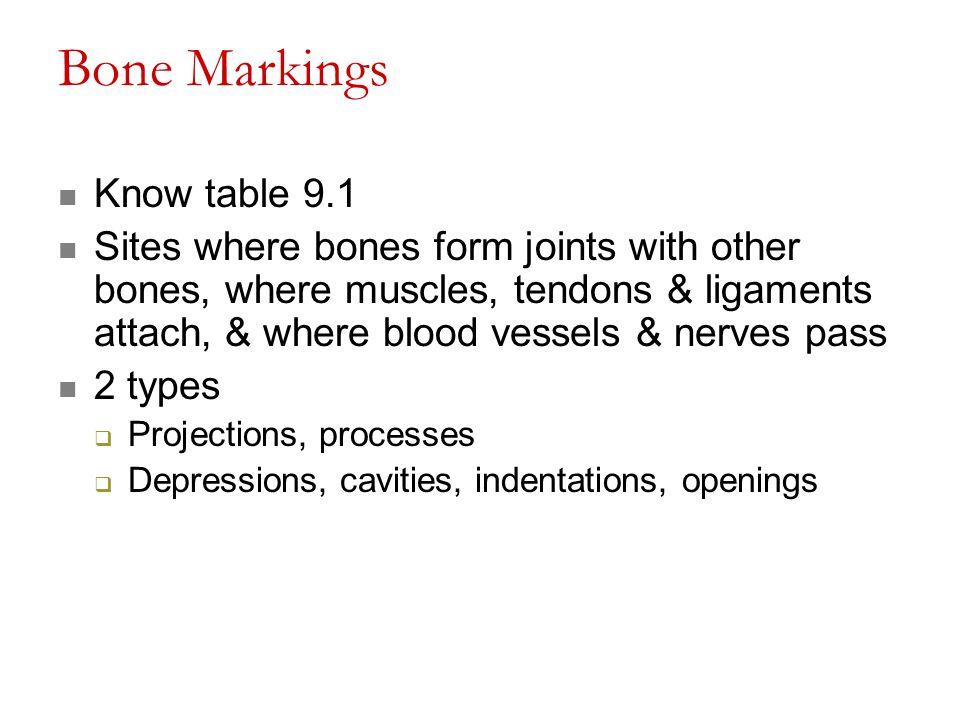 Bone Markings Know table 9.1