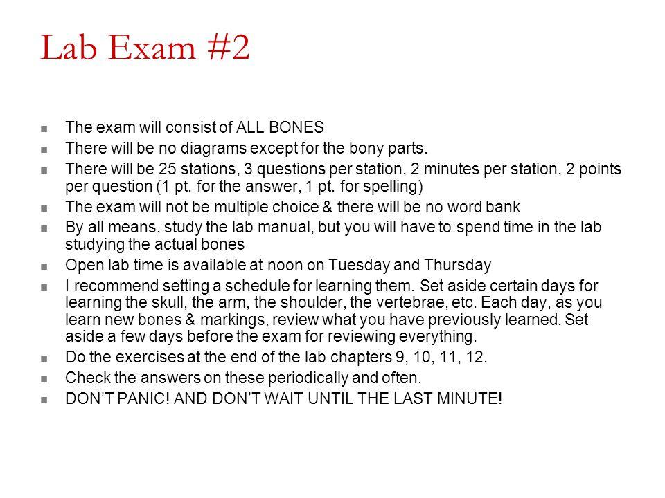 Lab Exam #2 The exam will consist of ALL BONES