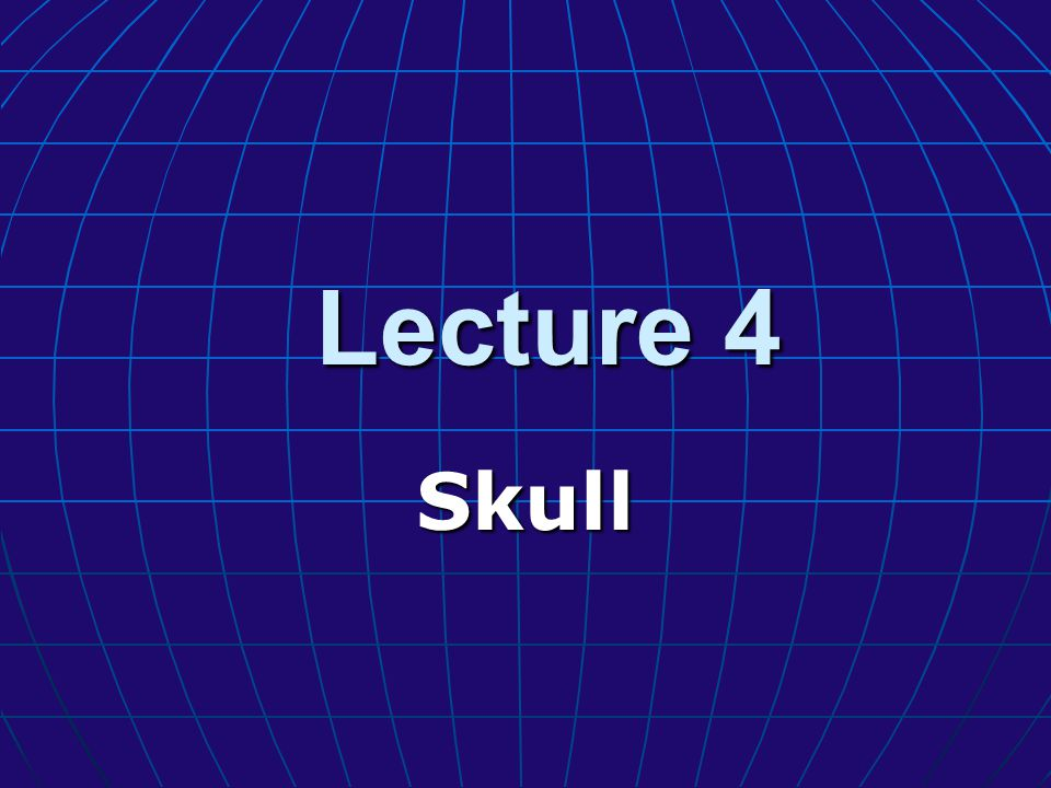 Lecture 4 Skull