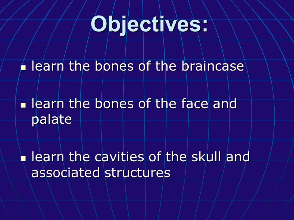 Objectives: learn the bones of the braincase
